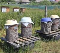 Медовий Спас: як відрізнити дикий мед від того, що з пасіки