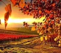 24 вересня – яке сьогодні свято та що не можна робити в цей день