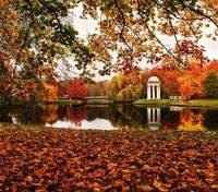 Самые красивые парки Украины: осенние фото, которые завораживают