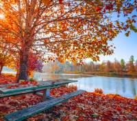 1 жовтня – яке сьогодні свято та що не можна робити в цей день
