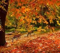 28 октября – какой сегодня праздник и что нельзя делать в этот день