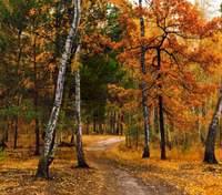 29 октября – какой сегодня праздник и что нельзя делать в этот день