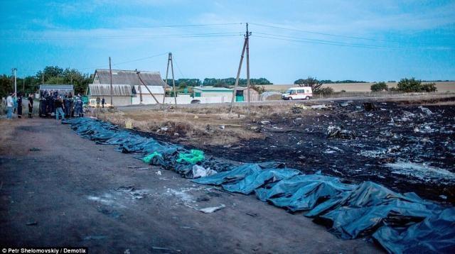 События 21 июля: Резолюция ООН по Boeing 777, тела погибших отправили, закон о мобилизации