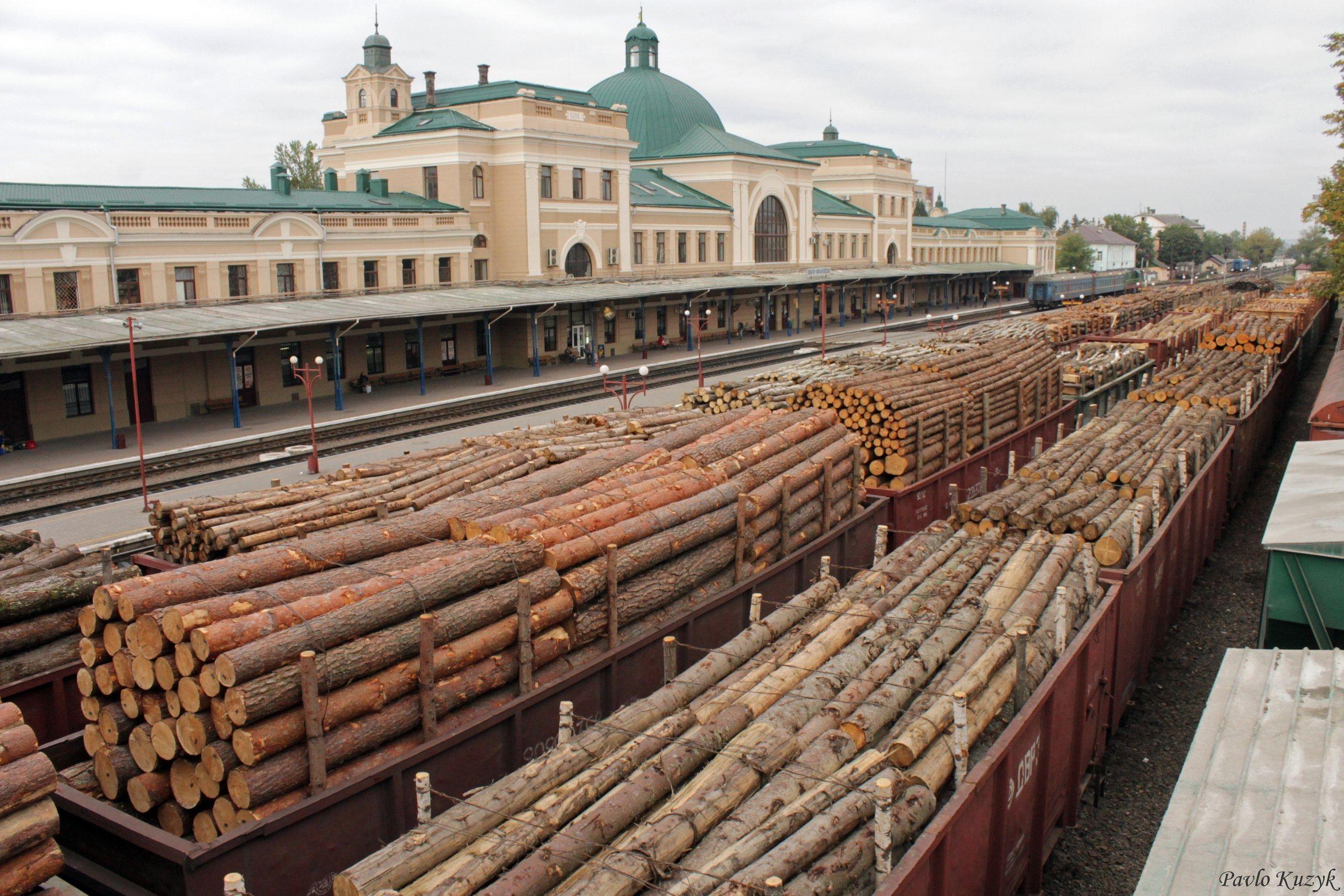 Інспектор Івано-Франківської митниці допомагав родичу експортувати за кордон деревину