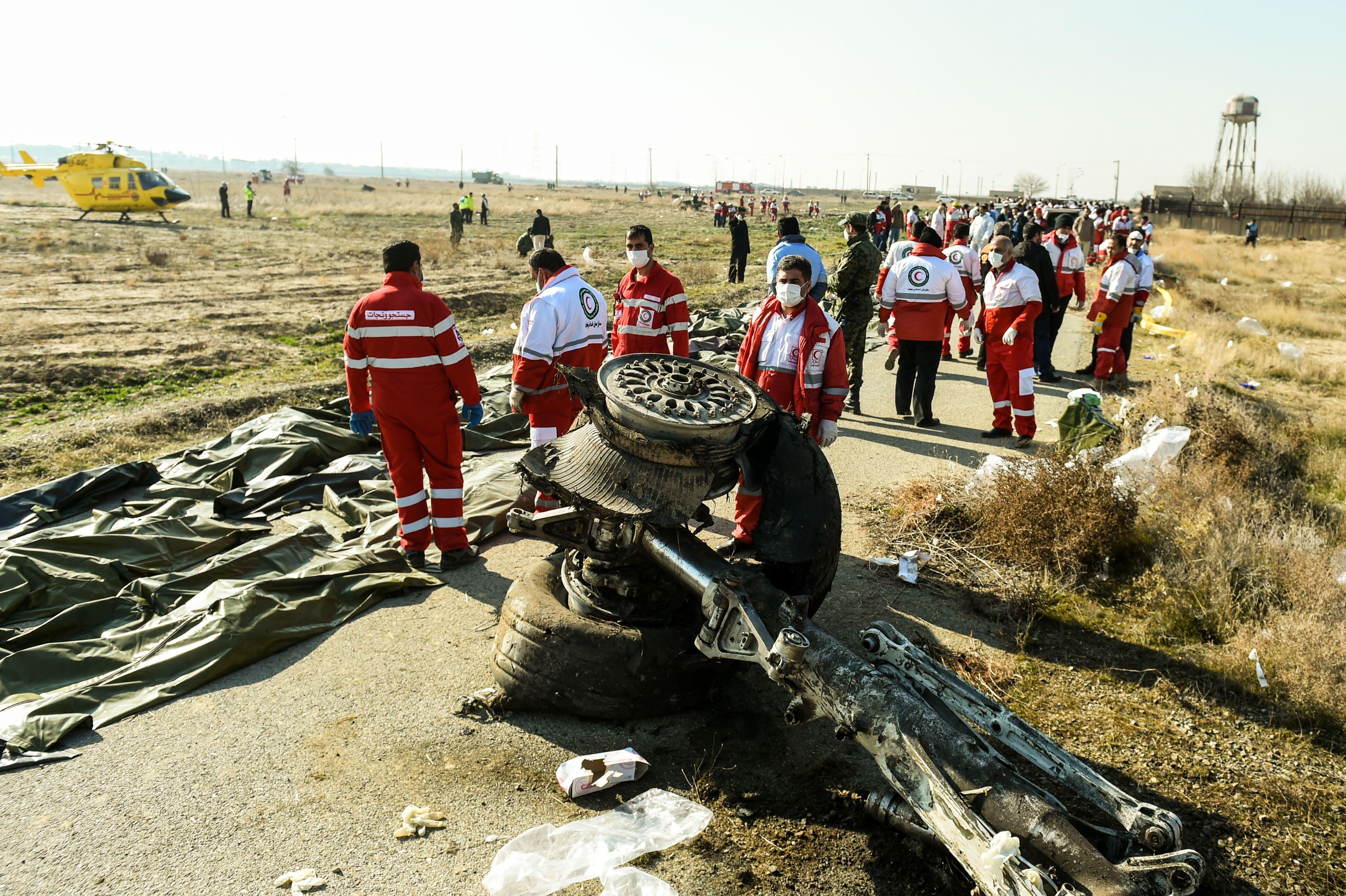 фото з місця аварії літака МАУ в Ірані катастрофа фото розбитий літак МАУ