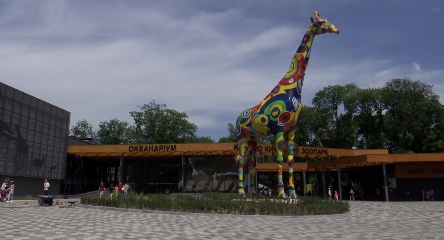 Как живется животным киевского зоопарка после карантина: трогательные фото и видео - Новости Киев - 24 Канал