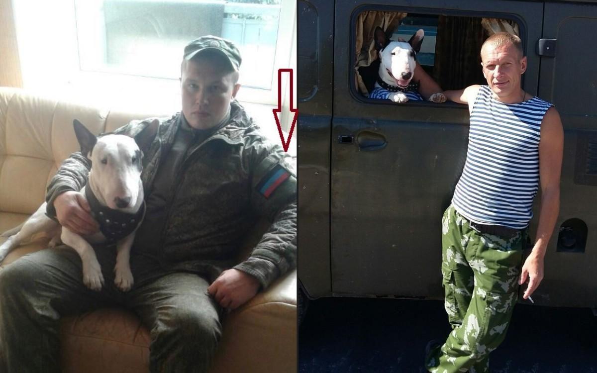 Пес из Горловки сдал российского разведчика: фото