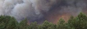Пожарным удалось локализовать масштабный пожар на военном полигоне под Киевом