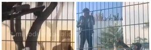Виганяли сльозогінним газом: чоловік заліз у вольєр з левами й не хотів виходити – відео з Одеси