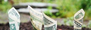 5 самых величайших инвесторов, которые изменили мир финансов: как им это удалось