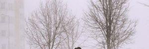 Мощные порывы ветра и туман: в каких областях прогнозируют непогоду