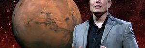 Розробник відеоігор надіслав Ілону Маску 154 повідомлення: реакція підприємця