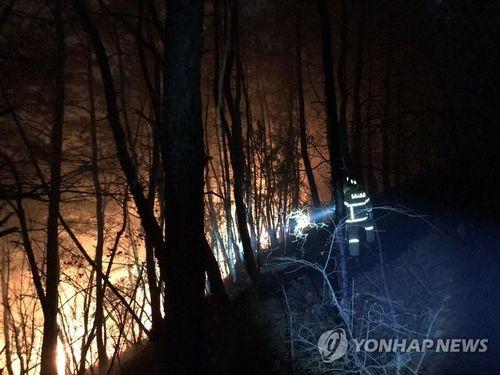 Пожежі у Південній Кореї