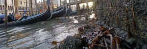 У Венеції пересохли знамениті канали: відео