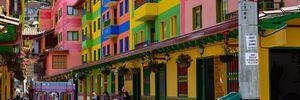 Цены для туристов, высокие пальмы и кофе: интересные факты о Колумбии