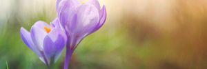 4 марта – какой сегодня праздник и что нельзя делать
