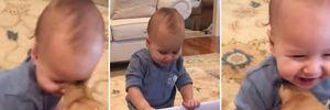 Батьки подарували сину цуценя: відео зворушливої реакції малюка