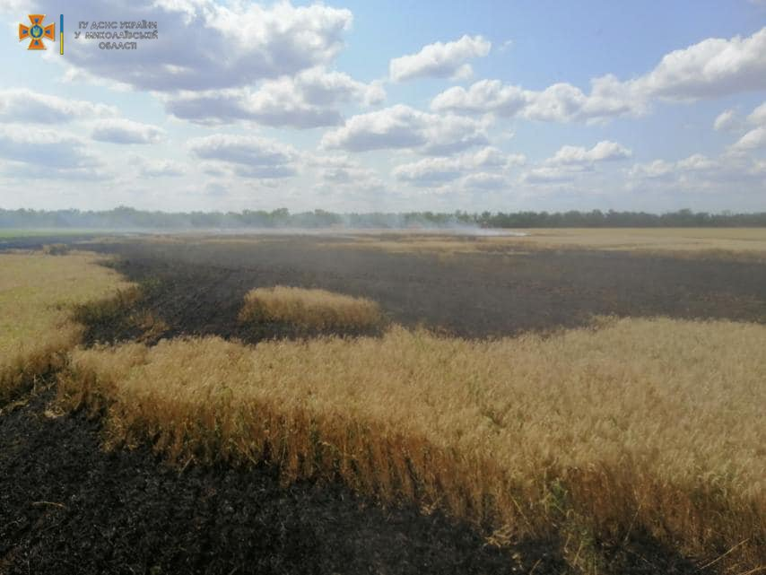 Площа пожежі складала 4,9 гектара