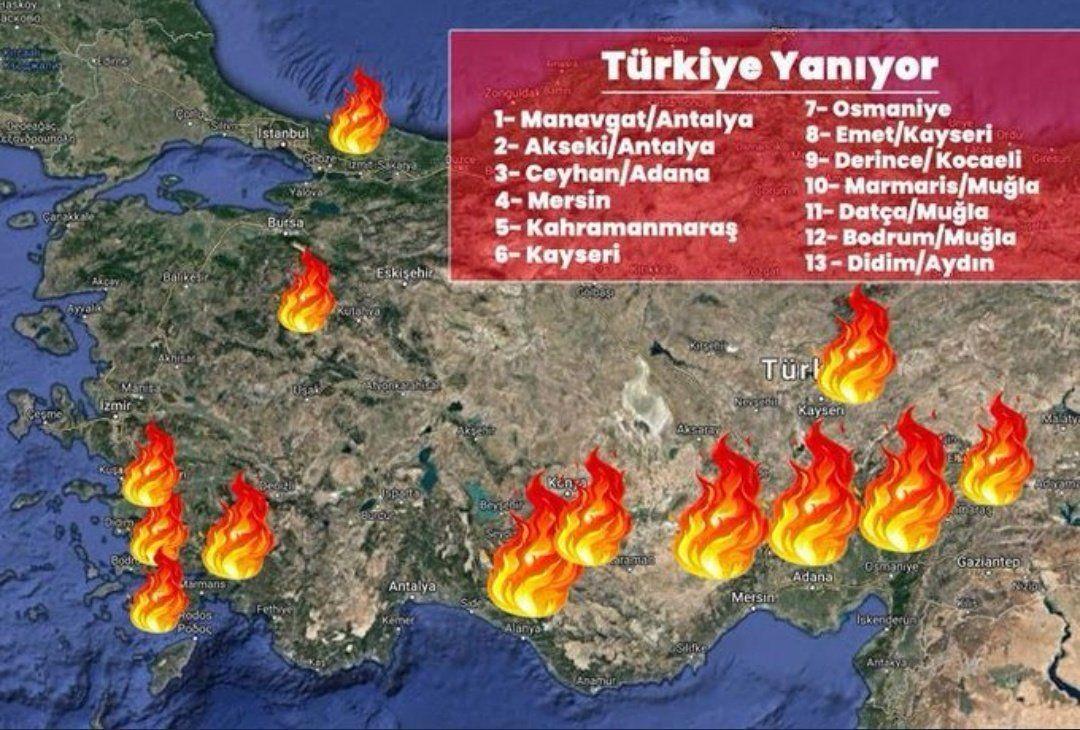 В яких регіонах Туреччини вирують лісові пожежі