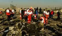 Авіакатастрофа МАУ в Ірані: реакція українських посадовців