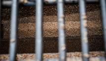 Карантин в Украине: как государство сможет усложнить работу аграриям