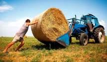 Украинские фермеры могут массово остановить работу
