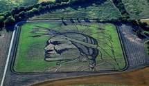 Шедевры на полях: художник рисует монументальные картины трактором