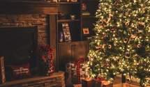 Как ухаживать за новогодней елкой, чтобы она простояла долго: 6 полезных советов