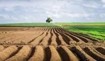 Майже 2 мільйони гектарів земель передані ОТГ, – Держгеокадастр