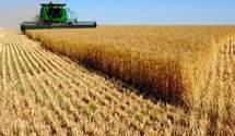 Продажа земли иностранцам: когда и как будет решаться вопрос, – заявление министра агрополитики