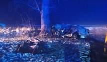 Врізався у дерево, авто загорілося: подробиці смертельної ДТП на Житомирщині