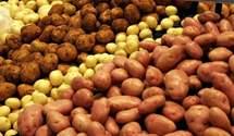 Імпорт картоплі в Україну за останні два роки виріс на фантастичні 2500%
