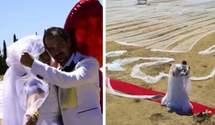 692 метра фаты: невеста удивила мир своим свадебным платьем