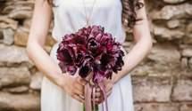 Мама встретила на свадьбе дочь, которая пропала без вести: она была невестой ее сына