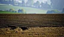 Ждите до 2024 года, – Фурса советует украинцам не спешить продавать земельные паи