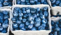 В Польше ожидают хороший урожай самой дорогой ягоды – голубики