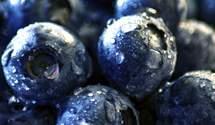 Сезон черники набирает обороты: сколько просят за ягоду