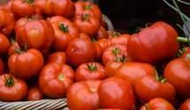 Чи можна їсти помідори щодня: пояснення нутриціологів