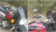 Заховалася у мотоциклі й напала на чоловіка: моторошний інцидент зі змією на Рівненщині