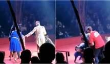 В России медведь набросился на беременную ассистентку дрессировщика в цирке: жуткое видео