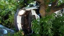 Жуткое ДТП на Николаевщине: разбился микроавтобус, пять человек погибли