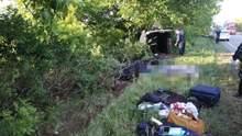 З'явилися цікаві деталі щодо смертельної ДТП з автобусом на Миколаївщині