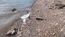 Вода в Крыму: неутешительные данные от активиста