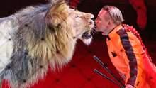 Цирк без животных: что значит запрет использования животных в шапито