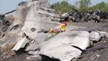 """Катастрофа малайзіського Boeing MH17: СБУ затримала водія тягача, що перевозив """"Бук"""""""