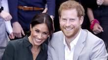 Бывший политик обвинил принца Гарри и Меган Маркл в хищении средств