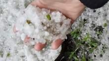 Люди в розпачі: сильний град на Закарпатті знищив урожай – фото
