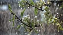 Прогноз погоди на 28 травня: Україну омиють сильні дощі та грози