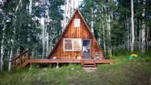 Как из фильмов ужасов: уникальный готический домик на Львовщине – фото