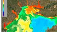 "Как ""цветет"" Черное море: фото и видео со спутника"